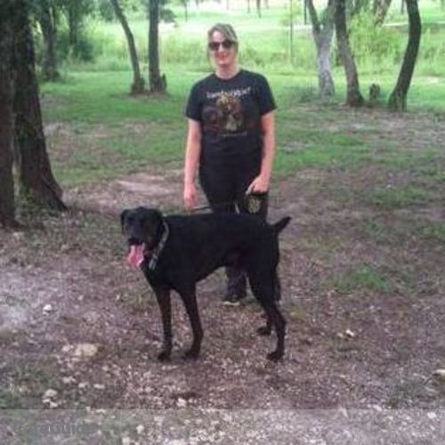 Pet Care Provider Lauren Schwenke's Profile Picture