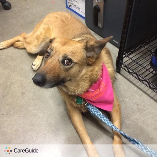 Pet Care Job Kathleen S's Profile Picture