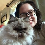 Lifelong animal lover and cat expert looking for pet sitting jobs in the Philly area