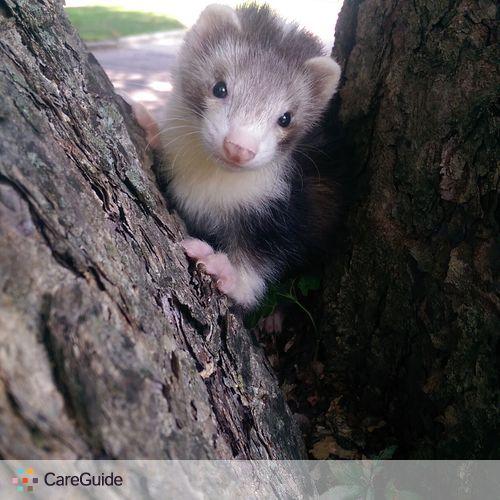 Pet Care Provider Angel S's Profile Picture