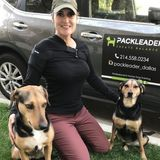 Professional dog trainer recently relocated to Portland from Dallas, Texas