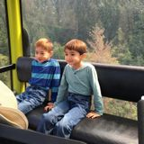 Looking for a Babysitter in the Niagara Falls Area for my two boys, a dog and a kitten.