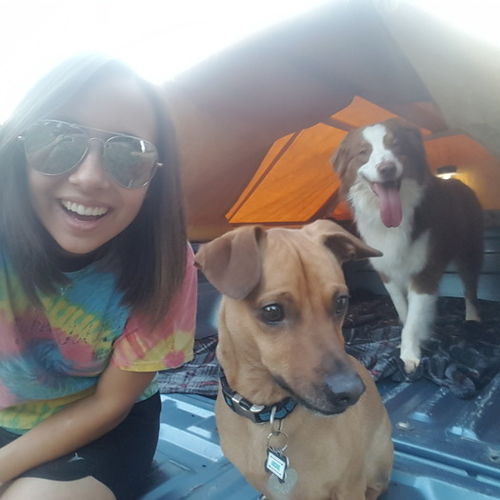Pet Care Provider Libby W's Profile Picture