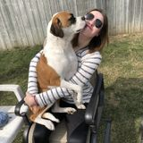 Trustworthy, flexible dog care taker!