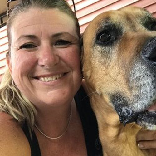 House Sitter Provider Julie F's Profile Picture