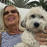 Experienced Pet and House sitter