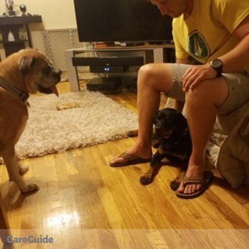 Pet Care Provider Daniel F's Profile Picture