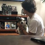 North Richland Hills Pet Carer Seeking Being Hired in Texas