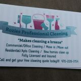 Rozies Professional Cleaning