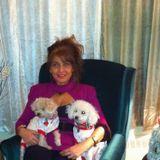 Qualified Pet Care Provider in Laval, Quebec
