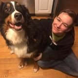 Hi there! Im Colleen, and Im currently a student who had do give up her own dog due to financial issues. I love animals!