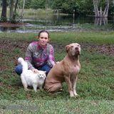 Dog Walker, Pet Sitter in Eustis