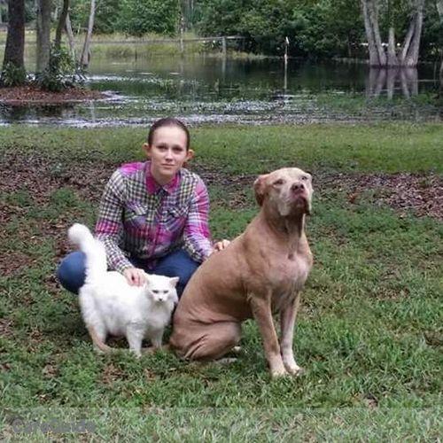 Pet Care Provider Shyan Hatheway's Profile Picture