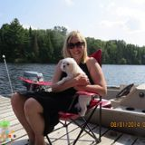 Dog Walker, Pet Sitter in Milton
