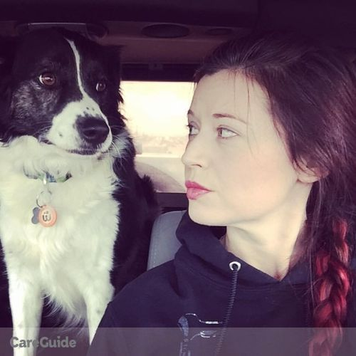 Pet Care Provider Suzanne S's Profile Picture