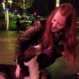 Searching for Toronto Animal Lover, Ontario Jobs