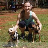 Dog Walker, Pet Sitter in Alpharetta
