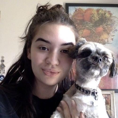 Pet Care Provider Siera P's Profile Picture