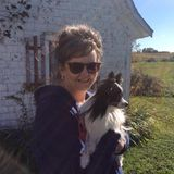Saint Albert House and Petsitter Searching for Being Hired in Alberta