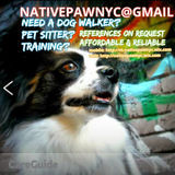 Dog Walker, Pet Sitter in Manhattan