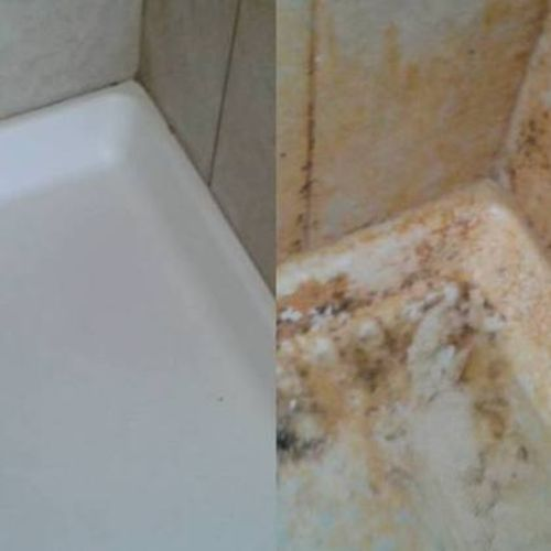 Housekeeper Provider D.A. Milewski Household Cleaning Llc Gallery Image 3