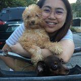 Loving Pet Care Provider in North York