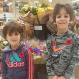 Looking for summer child care in Halifax for 2 boys