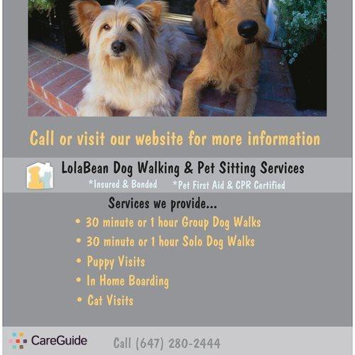 Pet Care Provider Catherine Vassi's Profile Picture