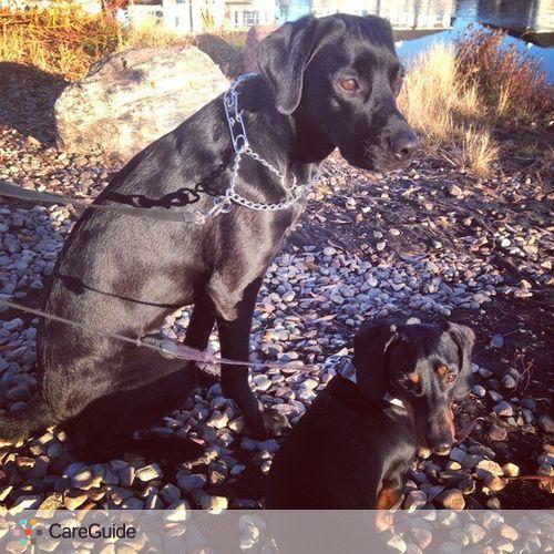 Pet Care Job Raphaela H's Profile Picture