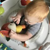 FT Nanny Required for Ridiculously Cute 6 Month Old (Sept - Christmas)