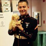 Marine corps veteran Dog Walker