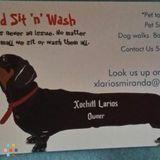 Dog Walker, Pet Sitter in Long Beach