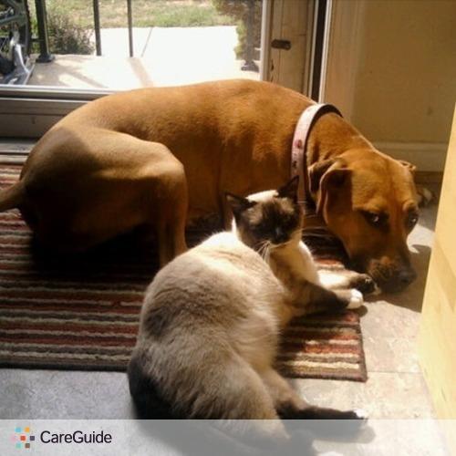 Pet Care Provider Heidi T's Profile Picture