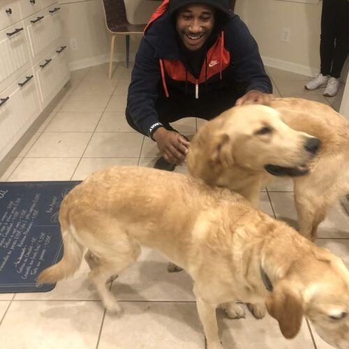 A dog caring loving guy