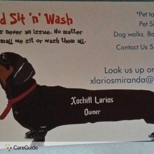 Pet Care Provider Xochitl Larios's Profile Picture