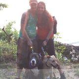 Dog Walker in Parkville