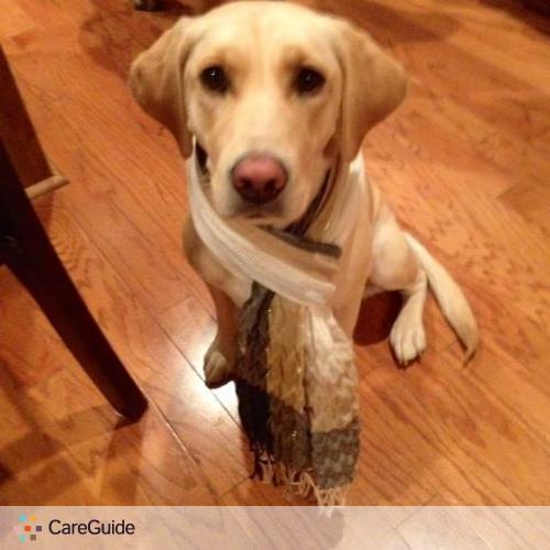 Pet Care Job Ali Pino's Profile Picture