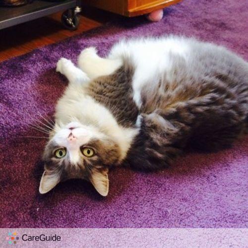 Pet Care Provider Sarah Manter's Profile Picture