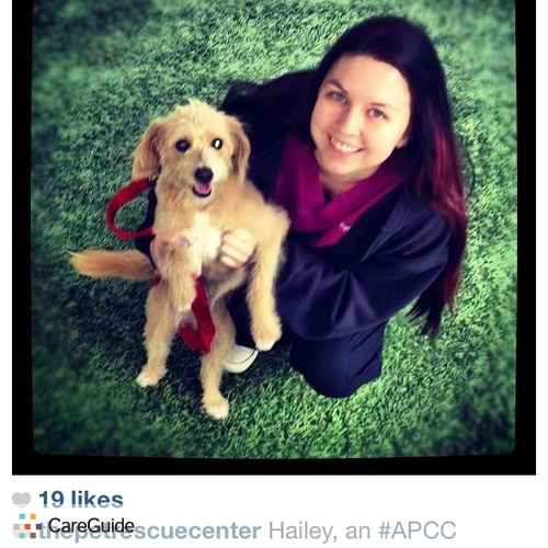 Pet Care Provider Hailey Wyngaarden's Profile Picture