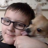 I will offer dog sitting and dog walking jobs and will take good care