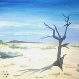 Painter in Virginia Beach
