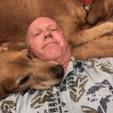 Trustworthy Animal Caregiver in Saint Charles