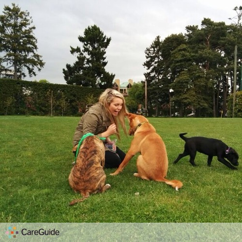 Pet Care Provider Sarah Cushing's Profile Picture