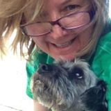 Professional Pet Sitter in Mountain Home, Arkansas
