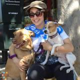 Dog Walker in Los Angeles