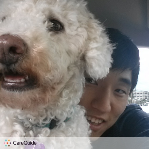 Pet Care Provider Sean Lee's Profile Picture