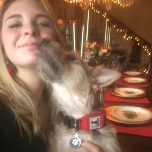 House Sitter Job Zoey Stull's Profile Picture