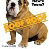 Roof Roof- Findley Roofing