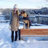 Experienced dog caregiver - grad student, dog owner