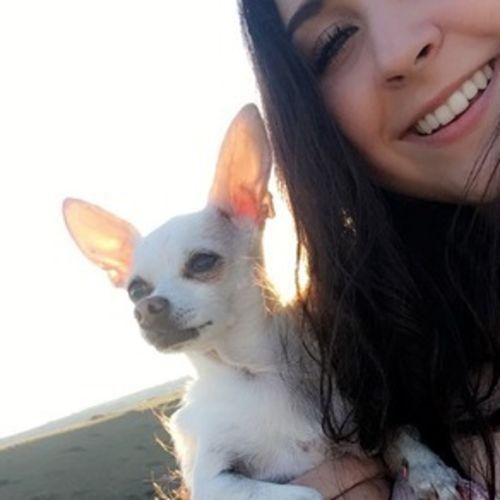Pet Care Provider Amelia S's Profile Picture